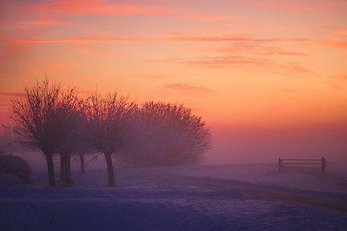 Winterlandschap von Bob Bleeker