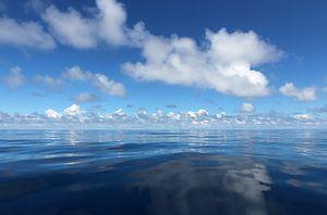 MID OCEAN van