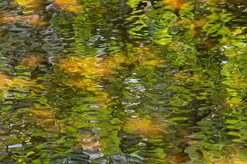 Rimpels en beweging in het water van Tonko Oosterink