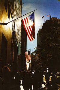 5th Avenue New York City (kleur) van David Berkhoff