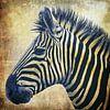 Zebra Portrait PopArt van Angela Dölling thumbnail