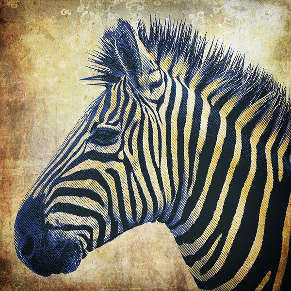 Zebra Portrait PopArt van Angela Dölling