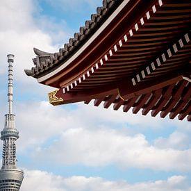 Traditie en moderniteit in Tokyo, Japan van Frank den Hond