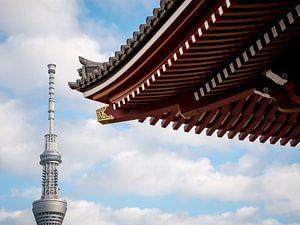 Traditie en moderniteit in Tokyo, Japan