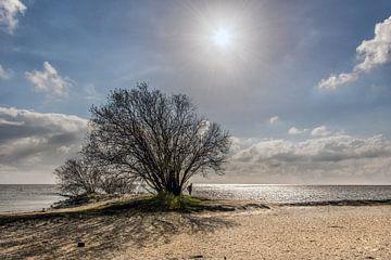Op het strand van Oudemirdum, Friesland, in het vroege voorjaar van Harrie Muis