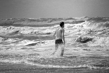 Hunting the waves von Hans Heemsbergen