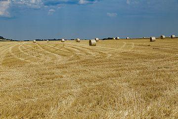 Oogsttijd op het Franse platteland