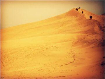 Dune du Pilat. von Esh Photography