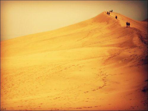 Dune du Pilat. van