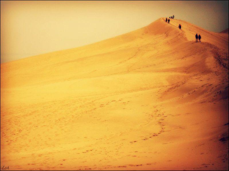 Dune du Pilat. van Esh Photography