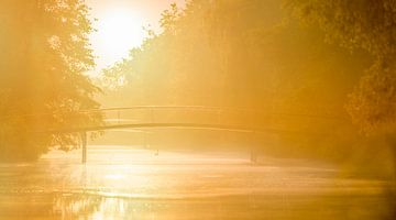 Een brug in het park van Hans van der Grient