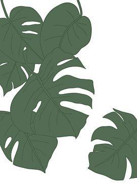 Blätter Illustration von Sophia Amend
