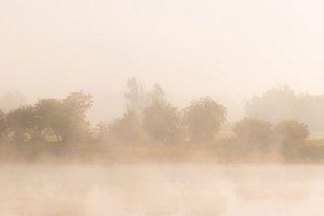 Bank im Nebel von Tania Perneel