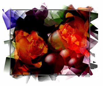 rose van Gertrud Scheffler