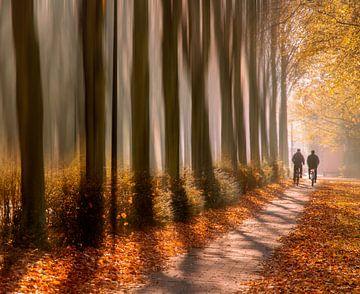 2 fietsers in de herfst van Esther van Lottum-Heringa