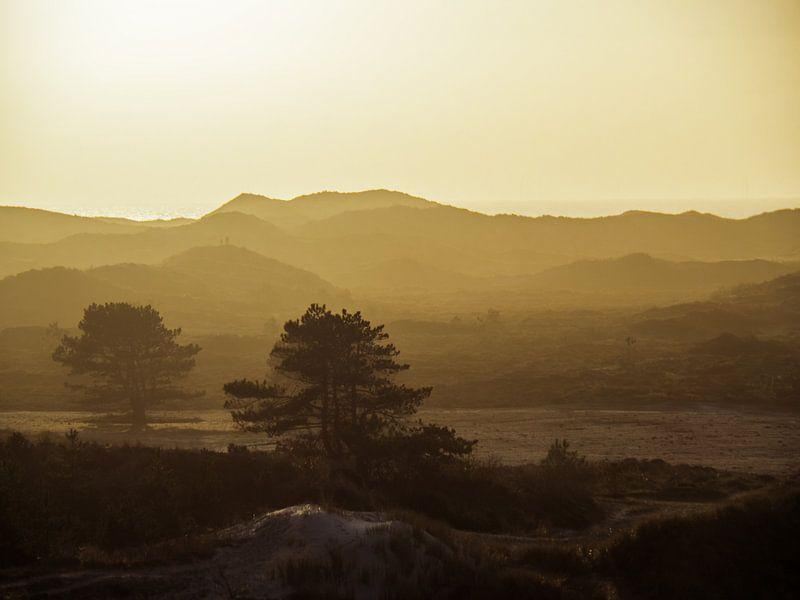 Hügellandschaft von Martijn Tilroe