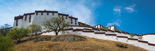 Het immens grote Potala paleis in Lhasa, Tibet