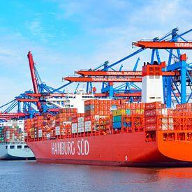 Containerschepen met containers die bij de containerterminal in de haven van Hamburg van Sjoerd van der Wal