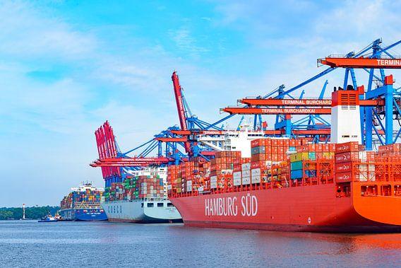 Containerschepen met containers die bij de containerterminal in de haven van Hamburg