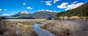 Uitloper van het Maligne Lake, Canada van Rietje Bulthuis