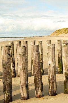 Staand strand met golfbrekers en duinen van Helene van Rijn