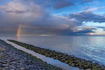 Het Wad Texel met prachtige Regenboog van Texel360Fotografie Richard Heerschap
