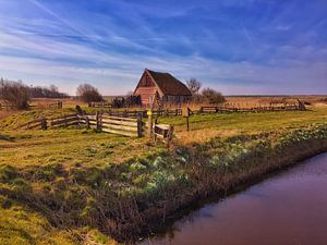 Oudste 'boet' op Texel, Den Hoorn van