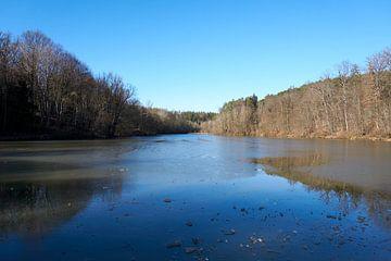 Meer met een bevroren oppervlak omringd door bomen in het bos van creativcontent