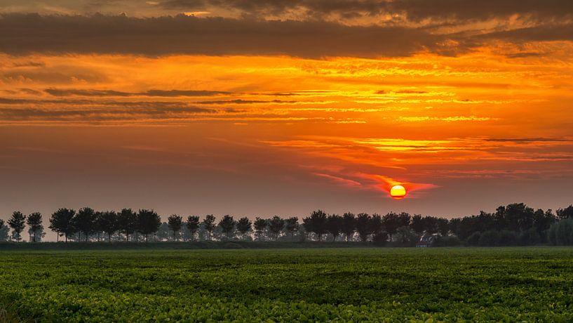 Zonsondergang in de polder van Bram van Broekhoven
