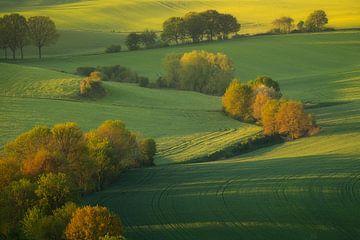 Die schönen Hügel im Süden von Limburg mit dem ersten Licht nach Sonnenaufgang. von Jos Pannekoek