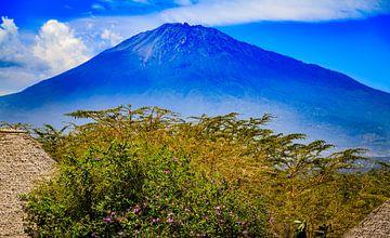 Mount Meru in Tanzania van