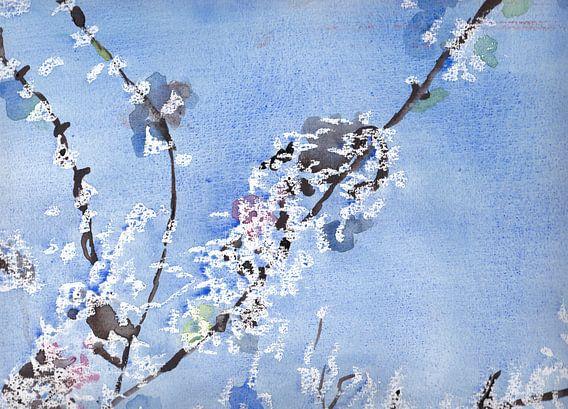 Witte bloesem tegen blauwe achtergrond