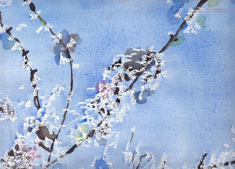 Witte bloesem tegen blauwe achtergrond van Catharina Mastenbroek