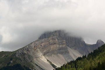 Berg Frankrijk van Ruud Wijnands