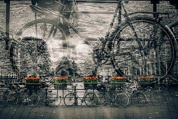 AMSTERDAM Fahrräder-Nostalgie  von Melanie Viola