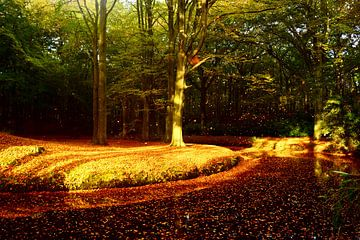 Landgoed Elswout von Michel van Kooten