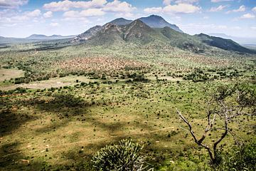 Keniaans uitzicht von Leon Weggelaar