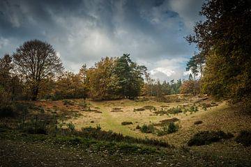Drentsch Landschap von Karen Klein
