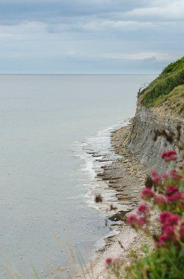 Kustlijn van Normandië