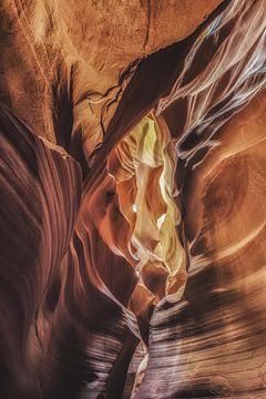 Antilopenschlucht von Dennis Van Donzel
