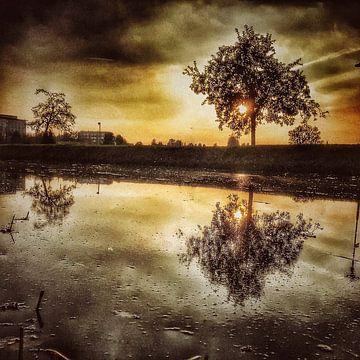 Michael Detter - Landschappen1 van Michael Detter