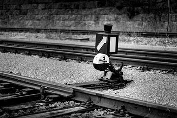 SCHLUCHSEE, GERMANY - JULY 19 2018: Schluchsee Train Station in van Raymond Voskamp