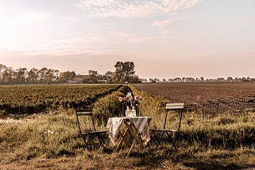 Garden Chair traveling in Zeeland II van Irene van de Wege
