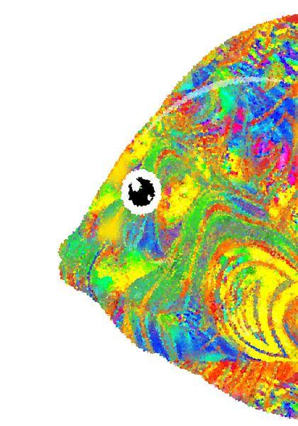 bunter Fisch von Marion Tenbergen