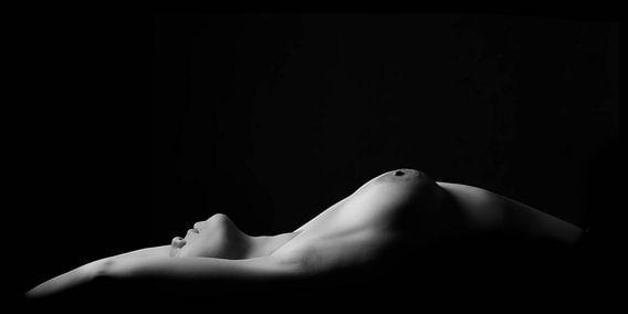 Naakte vrouw, low-key