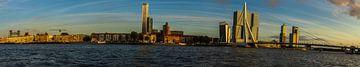 De skyline van Rotterdam van Richard Kortland