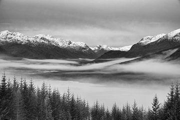 Winterlandschaft an einem nebligen Wintermorgen in Schottland von Studio de Waay