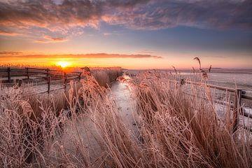 Een prachtige winterse zonsopkomst boven het Nationaal Park Lauwersmeer van Bas Meelker