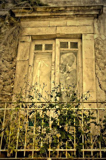 Ramshackled - Lost Places van Gisela Scheffbuch