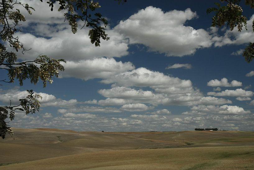 Landschap in Zuid Spanje van Simone Meijer